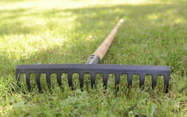 Grabie – narzędzie ogrodnicze potrzebne w każdym ogrodzie